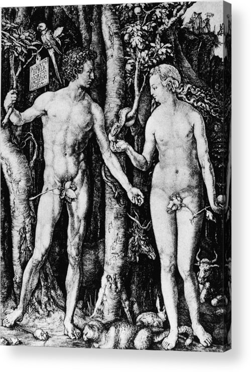 Engraving Acrylic Print featuring the photograph Engraving Of Adam And Eve by Hulton Archive