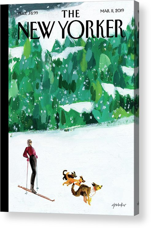 Skiing Acrylic Print featuring the painting Off The Path by Gayle Kabaker