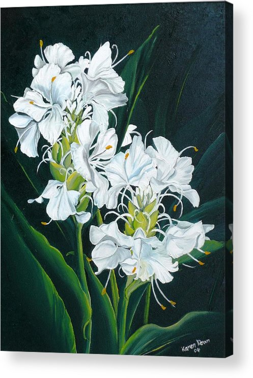Caribbean Painting Butterfly Ginger Painting Floral Painting Botanical Painting Flower Painting Water Ginger Painting Or Water Ginger Tropical Lily Painting Original Oil Painting Trinidad And  Tobago Painting Tropical Painting Lily Painting White Flower Painting Acrylic Print featuring the painting Butterfly Ginger by Karin Dawn Kelshall- Best
