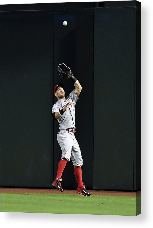 American League Baseball Acrylic Print featuring the photograph Skip Schumaker by Norm Hall