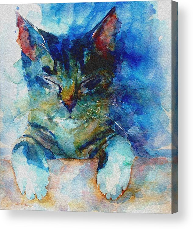 Cat Acrylic Print featuring the painting You've Got A Friend by Paul Lovering