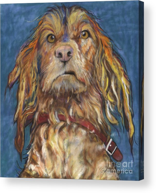 Golden Retriever Painting Acrylic Print featuring the pastel Drenched by Pat Saunders-White