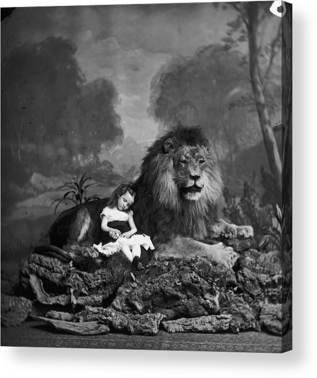 Stuffed Acrylic Print featuring the photograph Beauty And The Beast by London Stereoscopic Company