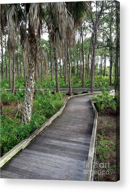 Boardwalk Acrylic Print featuring the photograph Boardwalk by K Simmons Luna