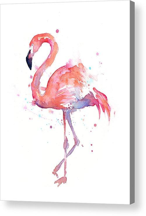 Bird Acrylic Print featuring the painting Flamingo Watercolor by Olga Shvartsur