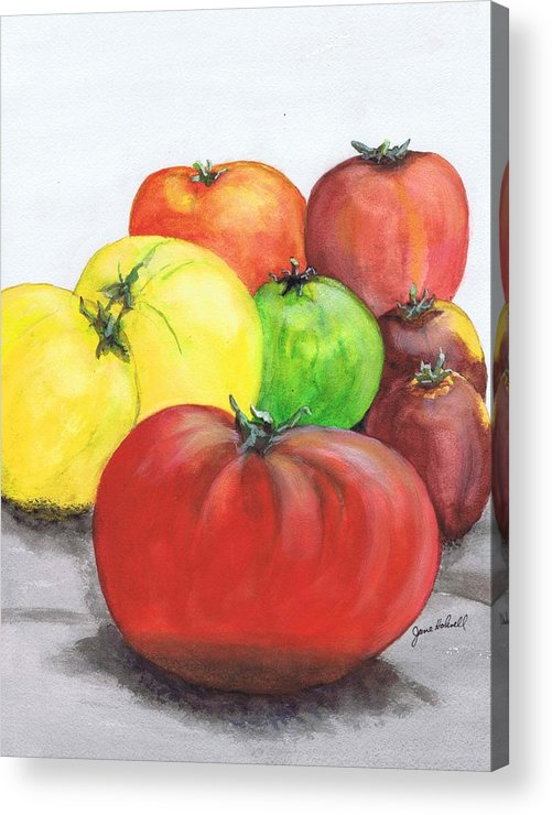 Tomato Acrylic Print featuring the painting Heirloom Tomatoes by June Holwell