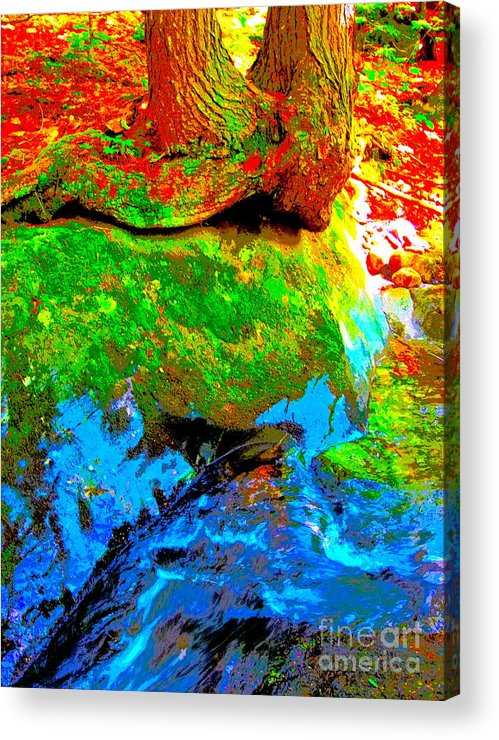 Landscape Acrylic Print featuring the photograph Hyper Childs Y53 by George Ramos