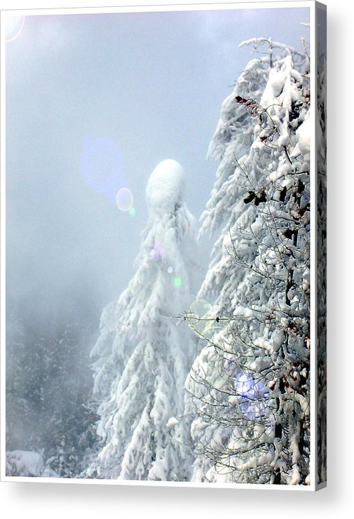 Landscape Acrylic Print featuring the photograph Snowy Trees by Kae Cheatham