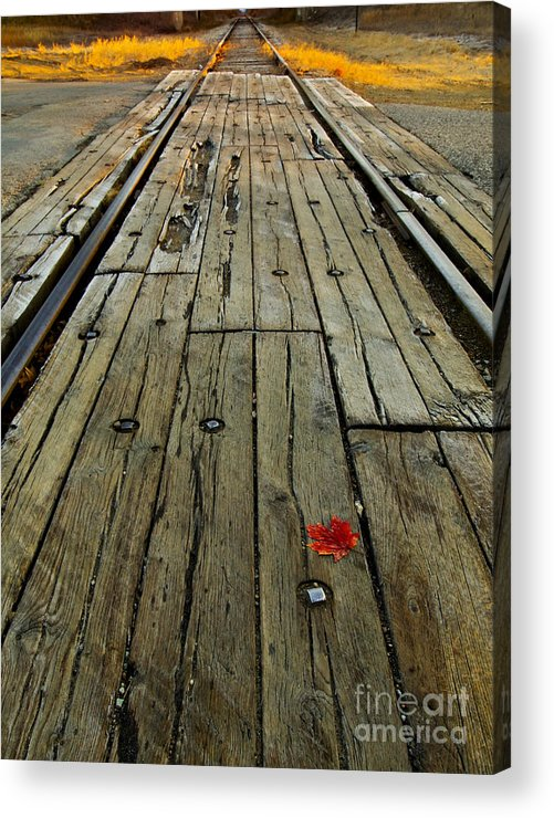 Railroad Tracks Acrylic Print featuring the photograph Lonely Leaf by Cheryl Butler