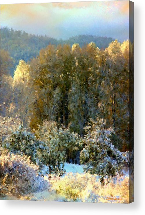 Swirls Of Snow Crystals Mingle With Leaves Blown By Winter�s Breath Acrylic Print featuring the photograph First Snow And Bosque Glow by Anastasia Savage Ealy
