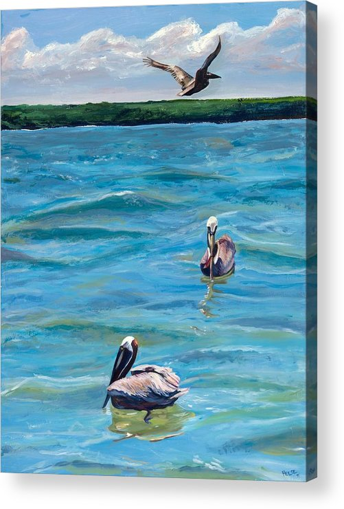 Pelicans Acrylic Print featuring the painting Boating In Fort Myers by Kathleen Heese