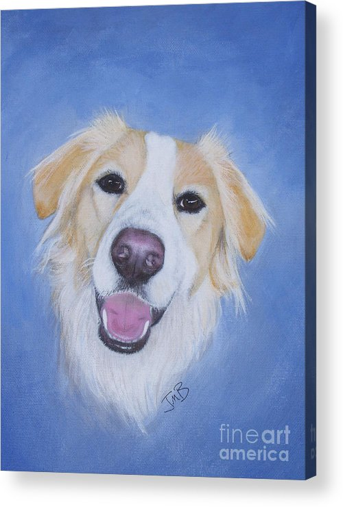 Dog Acrylic Print featuring the painting My Blonde Border Collie by Janice M Booth