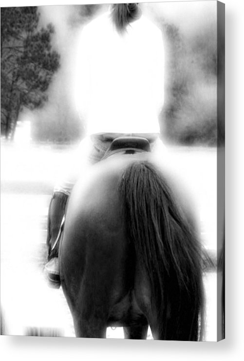 Horse Acrylic Print featuring the photograph A Pair Of Tails by Donna Thomas