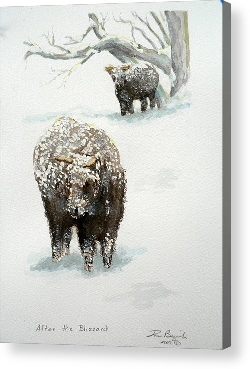 Cattle Acrylic Print featuring the painting After The Blizzard by Dan Bozich