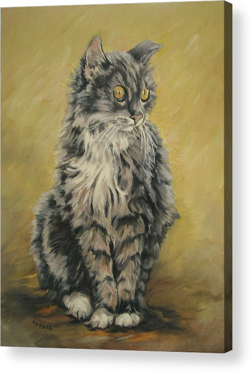 Cat Acrylic Print featuring the painting Barnhardt's Cat by Cheryl Pass