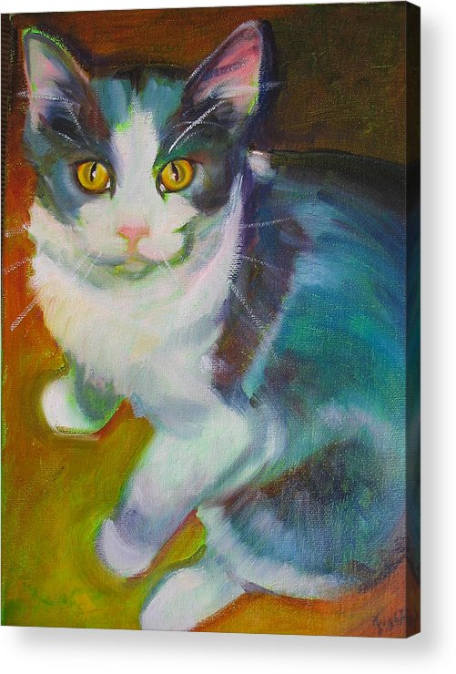Pet Acrylic Print featuring the painting Buddy The Cat by Kaytee Esser