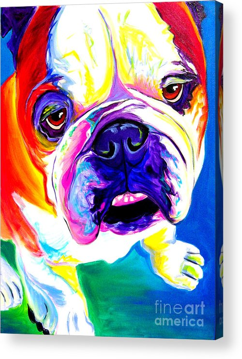 English Acrylic Print featuring the painting Bulldog - Stanley by Alicia VanNoy Call