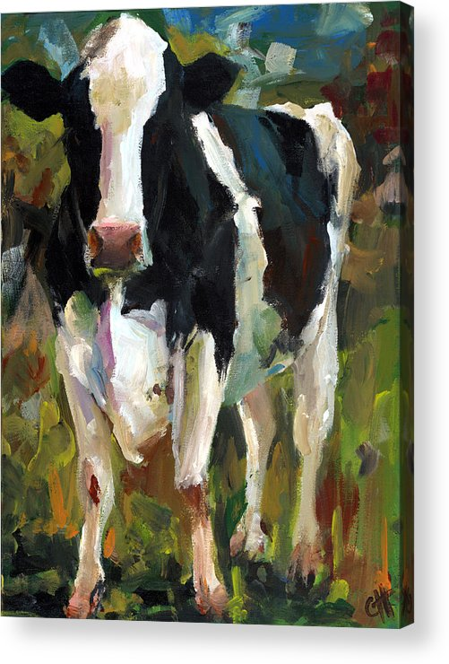 Connie the cow acrylic print by cari humphry for Cow painting print
