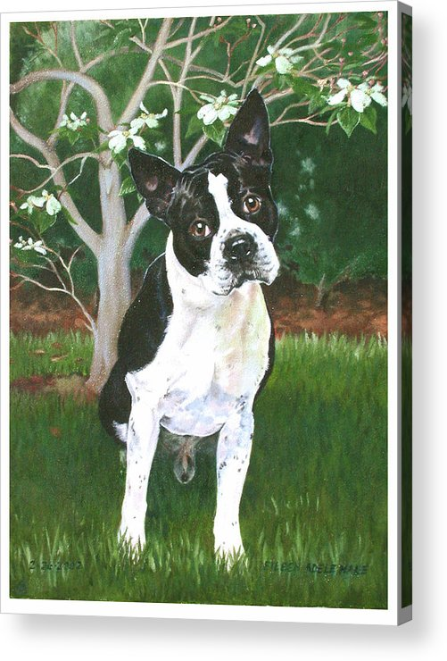 Portrait Acrylic Print featuring the painting Ditto by Eileen Hale