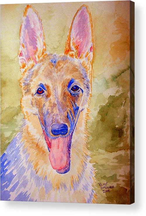 German Shepard Acrylic Print featuring the painting Elmo - Watercolor by Donna Hanna