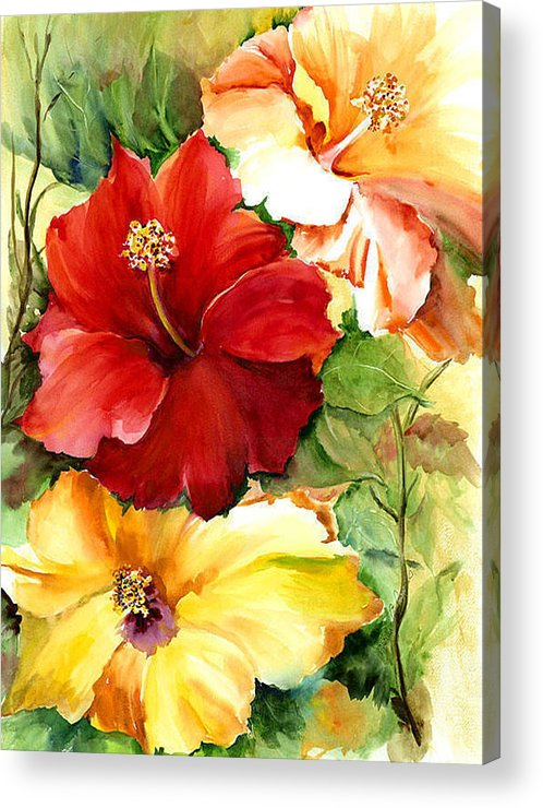 Flower Acrylic Print featuring the painting Glorious Hibiscus by Priscilla Powers