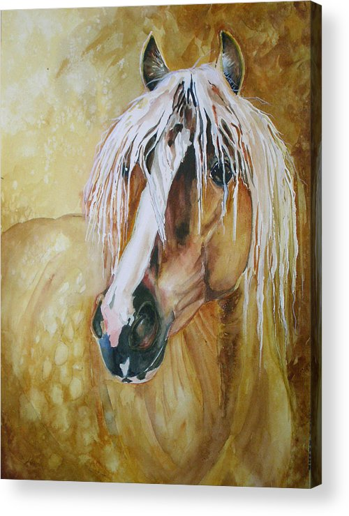 Equine Acrylic Print featuring the painting Golden Lance by Gina Hall