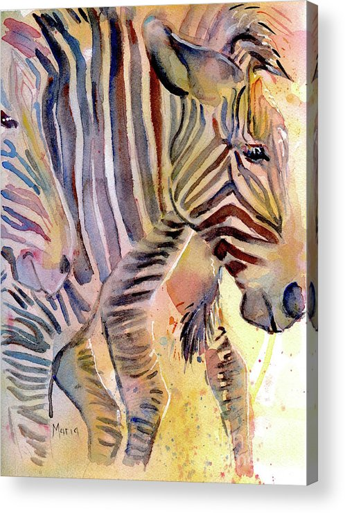 Zebra Acrylic Print featuring the painting Heads Or Tails by Maria's Watercolor