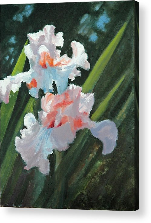 Irises Acrylic Print featuring the painting Iris Pour Une Belle Femme by Glenn Secrest