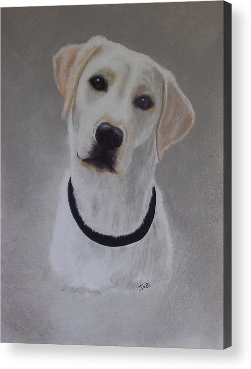 Pet Portrait Acrylic Print featuring the painting Maxie by Janice M Booth