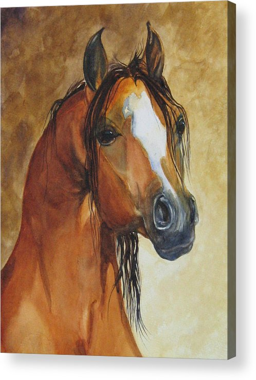 Eqine Acrylic Print featuring the painting May I Have One Too Please by Gina Hall