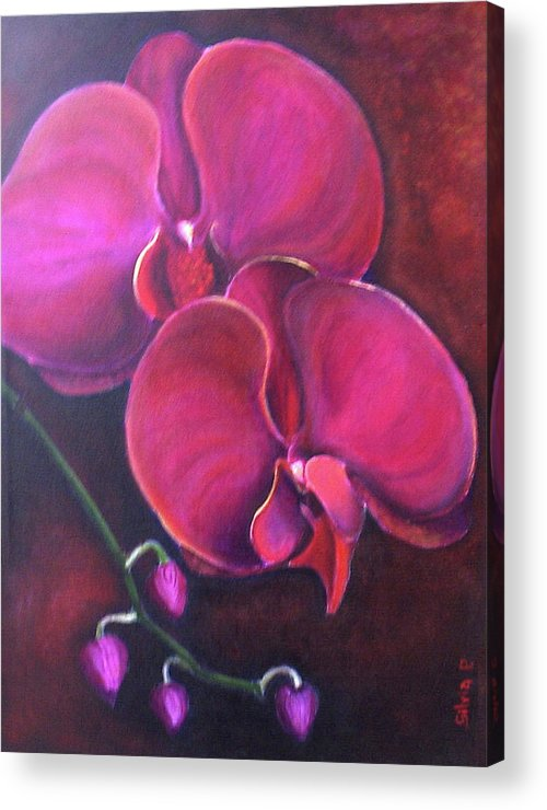 Orchid Acrylic Print featuring the painting Pink Orchid by Silvia Philippsohn