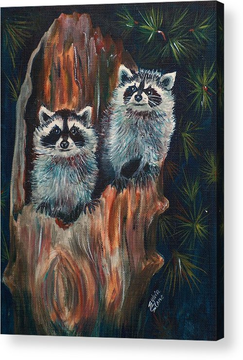 Animal Acrylic Print featuring the painting Racoons by Sylvia Stone