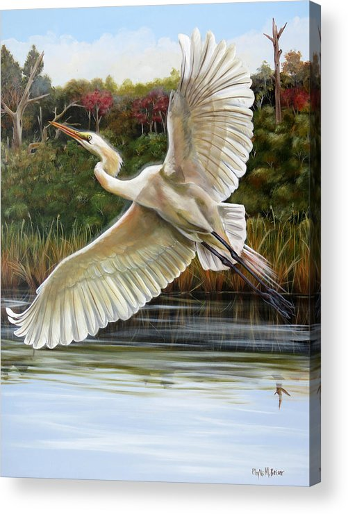 Bird Acrylic Print featuring the painting Rhythmical Flight by Phyllis Beiser