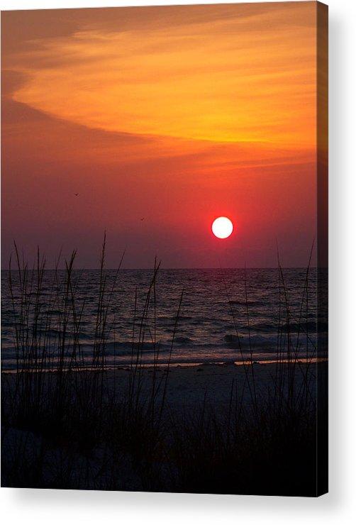 Sunset Acrylic Print featuring the photograph Sunlit Night by Amanda Vouglas