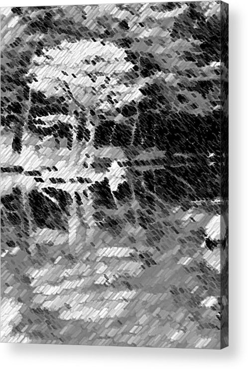 Abstract Acrylic Print featuring the photograph Tree Reflecting In Pond by Curtis Schauer