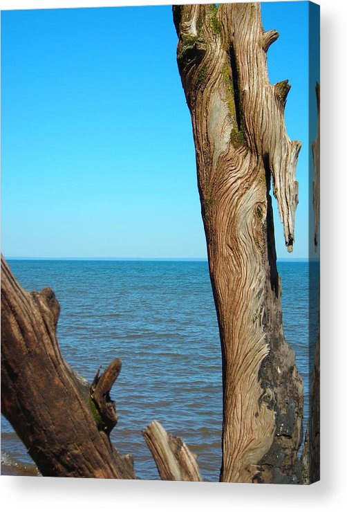 Ocean Acrylic Print featuring the photograph Tribal Markings by Peter Mowry