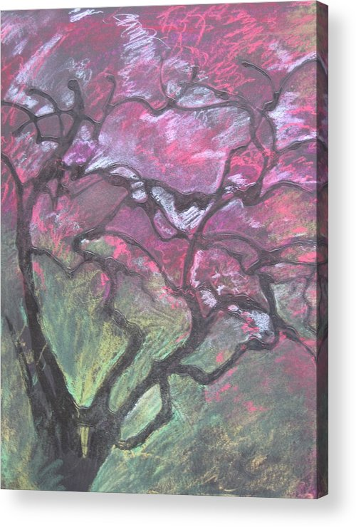 Pastel Acrylic Print featuring the drawing Twisted Cherry by Leah Tomaino