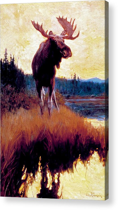 Moose Acrylic Print featuring the painting Moose Against Skyline by Phillip R Goodwin