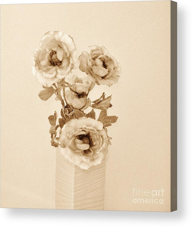 Photo Acrylic Print featuring the photograph Old Time Brown Toned Peonies by Marsha Heiken
