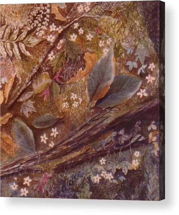 Leaves; Forest; Flowers Acrylic Print featuring the painting Forest Floor by Ben Kiger