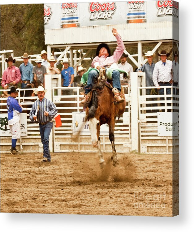 Cowboy Acrylic Print featuring the photograph Rodeo Cowboy Riding A Bucking Bronco by Mark Hendrickson