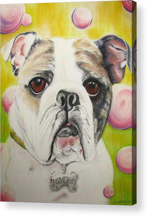 Dog Painting Acrylic Print featuring the pastel Fat Rose by Michelle Hayden-Marsan