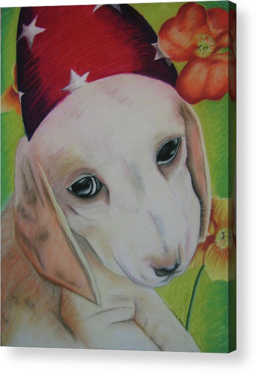 Dog Acrylic Print featuring the pastel Indy by Michelle Hayden-Marsan