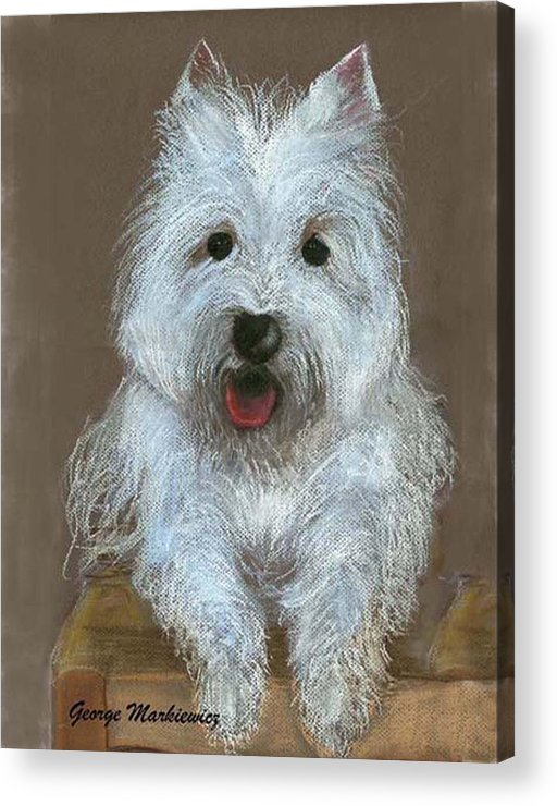 Dog Acrylic Print featuring the print Marilyn by George Markiewicz