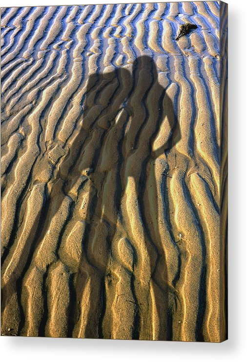 Two Women Body Shadows On A Beech Sand Of Cape Cod. Number 2 Acrylic Print featuring the photograph Shadows 02 by Victor Yekelchik