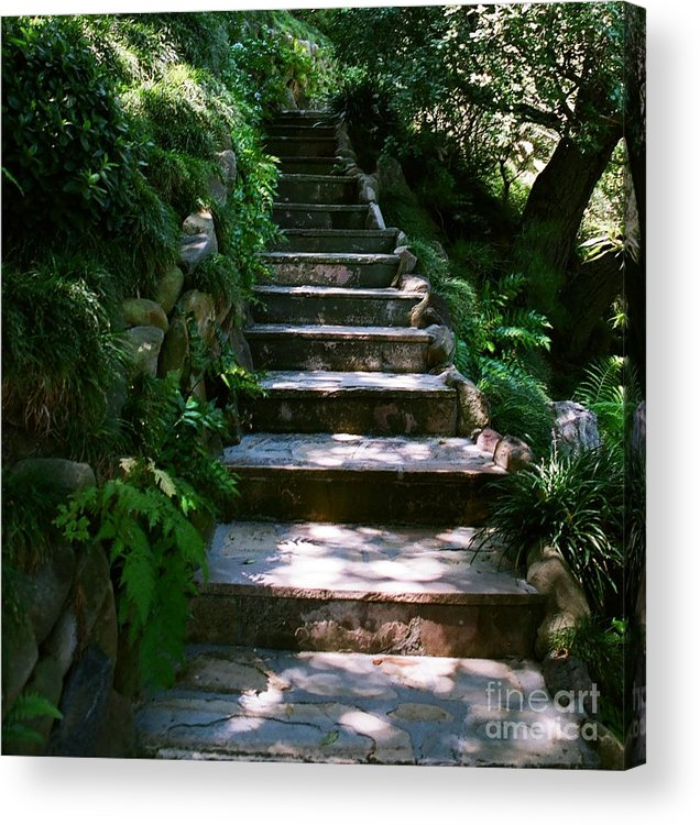 Nature Acrylic Print featuring the photograph Stone Steps by Dean Triolo