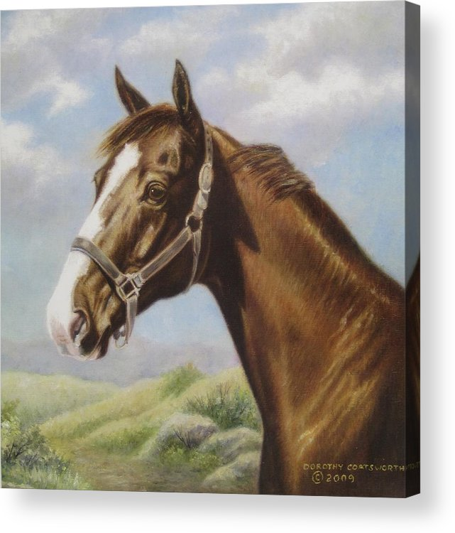 Acrylic Print featuring the painting Commission Chestnut Horse by Dorothy Coatsworth