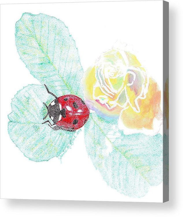 Rose And Ladybug Acrylic Print featuring the drawing Ladybug by Joanne Dour