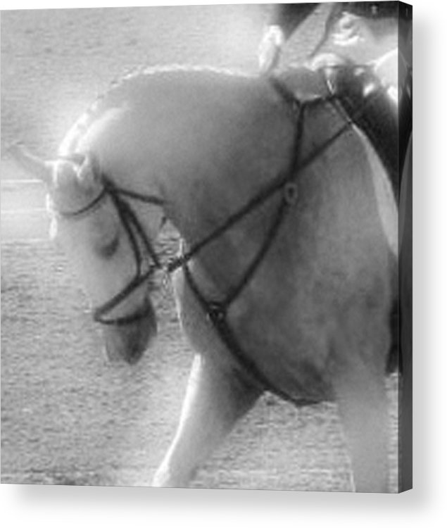 Horse Acrylic Print featuring the photograph Your Are Doing Such A Good Job by Donna Thomas