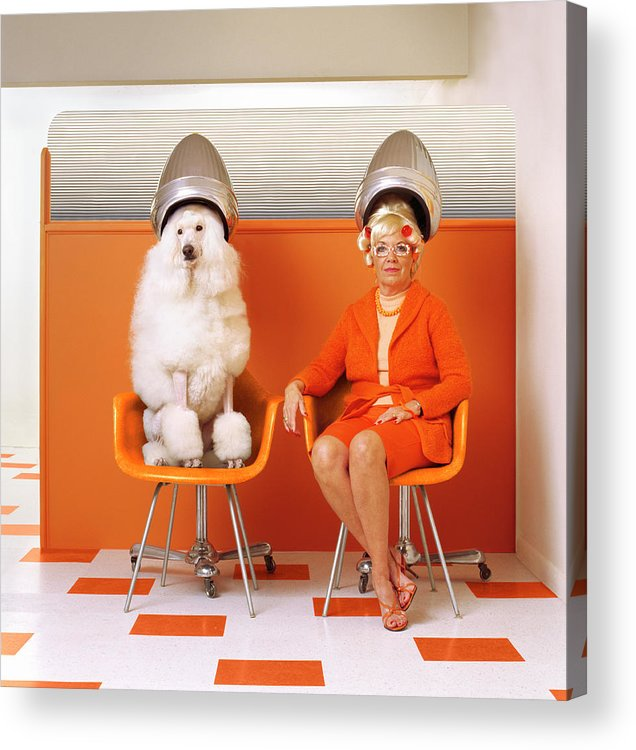 Orange Color Acrylic Print featuring the photograph Poodle And Senior Woman Sitting Under by Kendall Mcminimy